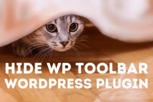 Hide Wp Toolbar